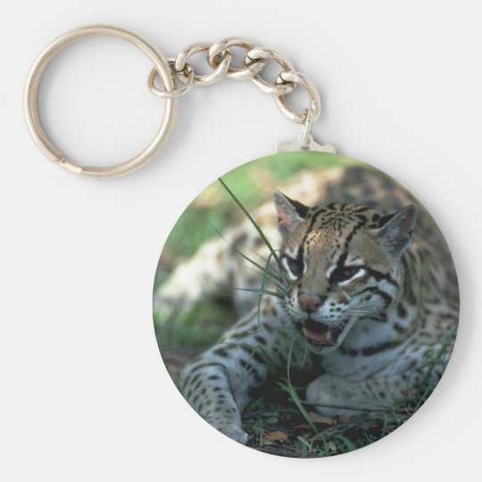 Ocelot lying down keychain