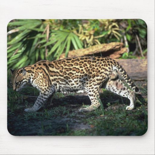 Ocelot Mouse Pad