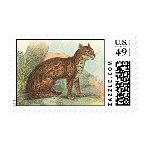 Ocelot Stamp