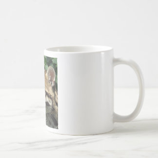 Ocelot Taza De Café