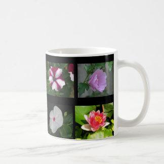 Ocho diversas flores 3 tazas de café