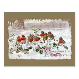 Ocho petirrojos ingleses en navidad del vintage tarjeta postal