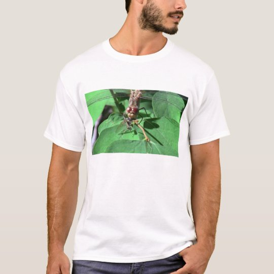 Ochoco Black Canyon Insects / Arachnids Bugs Fauna T-Shirt