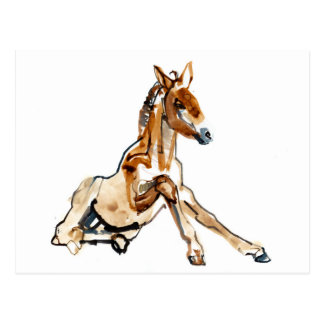 Ochre Foal Postcard