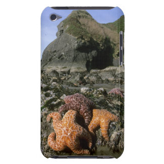 Ochre Seastars Pisaster ochraceous) Shi-Shi Barely There iPod Case