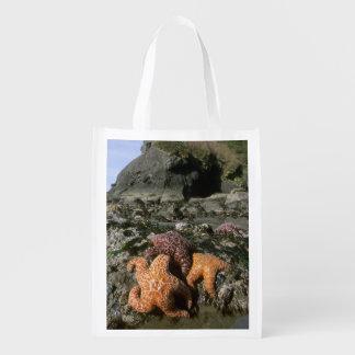 Ochre Seastars Pisaster ochraceous) Shi-Shi Reusable Grocery Bag