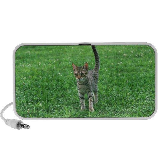 Ocicat 3 mini speaker