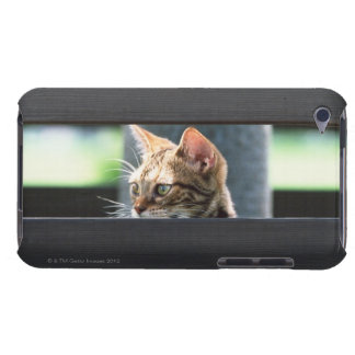 Ocicat 4 iPod touch Case-Mate case