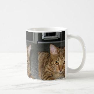 ocicat Chocolate Coffee Mug