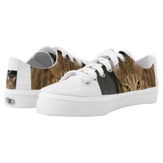 ocicat Chocolate Low-Top Sneakers