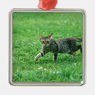 Ocicat Metal Ornament