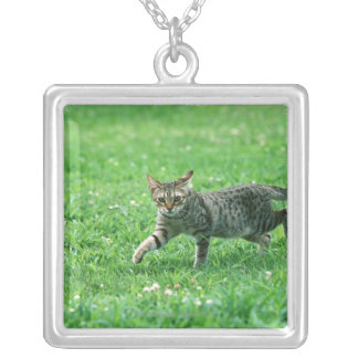 Ocicat Silver Plated Necklace