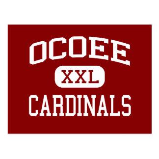 Ocoee - Cardinals - Middle School - Ocoee Florida Post Cards