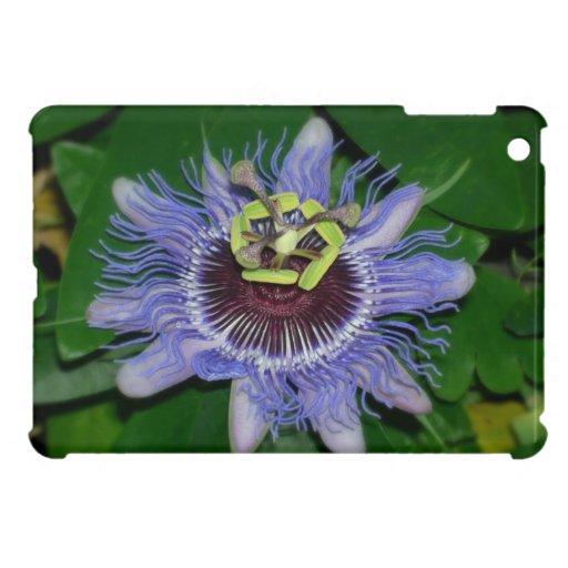 Ocoee flower Passiflora caerulea Passion flower Cover For The iPad Mini