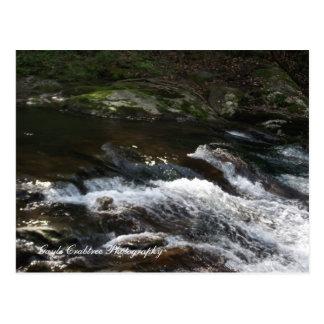 Ocoee River Tennessee Post Card