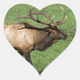 Oconaluftee Elk Heart Sticker