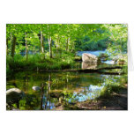oconto river beauty greeting cards