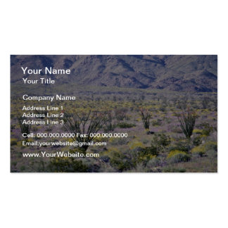 Ocotillo And Desert Flowers In Bloom flowers Double-Sided Standard Business Cards (Pack Of 100)