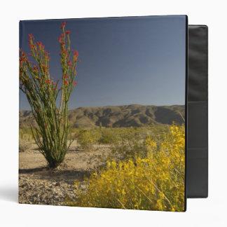 Ocotillo and desert senna binders