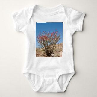 Ocotillo Baby Bodysuit