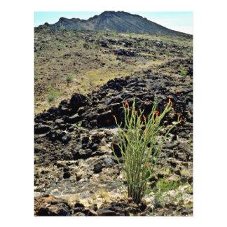 """Ocotillo en la ladera rocosa negra folleto 8.5"""" x 11"""""""