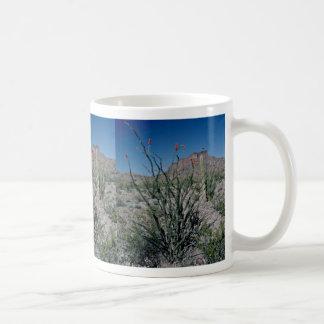 Ocotillo floreciente, mota detrás de las flores tazas de café