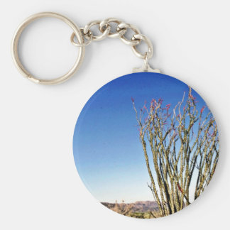 Ocotillo In Flower Key Chain