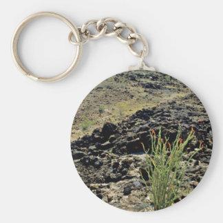 Ocotillo On Black Rocky Hillside Keychain
