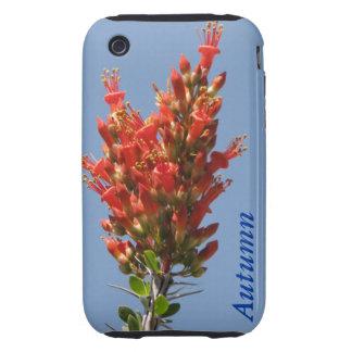 Ocotillo Plant iPhone 3 Tough Case