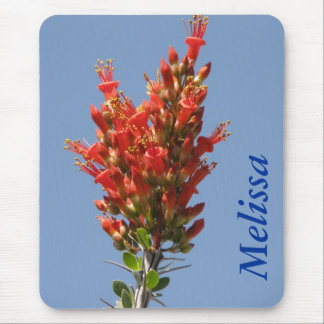 Ocotillo Plant Mouse Pad