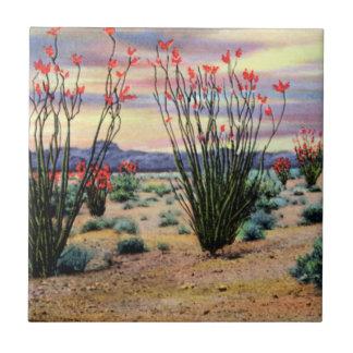 Ocotillos del desierto de Arizona en la floración Teja Cerámica