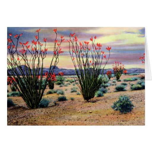 Ocotillos del desierto de Arizona en la floración Tarjeta