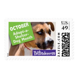OCTOBER - Adopt-a-Shelter-Dog Month Stamp