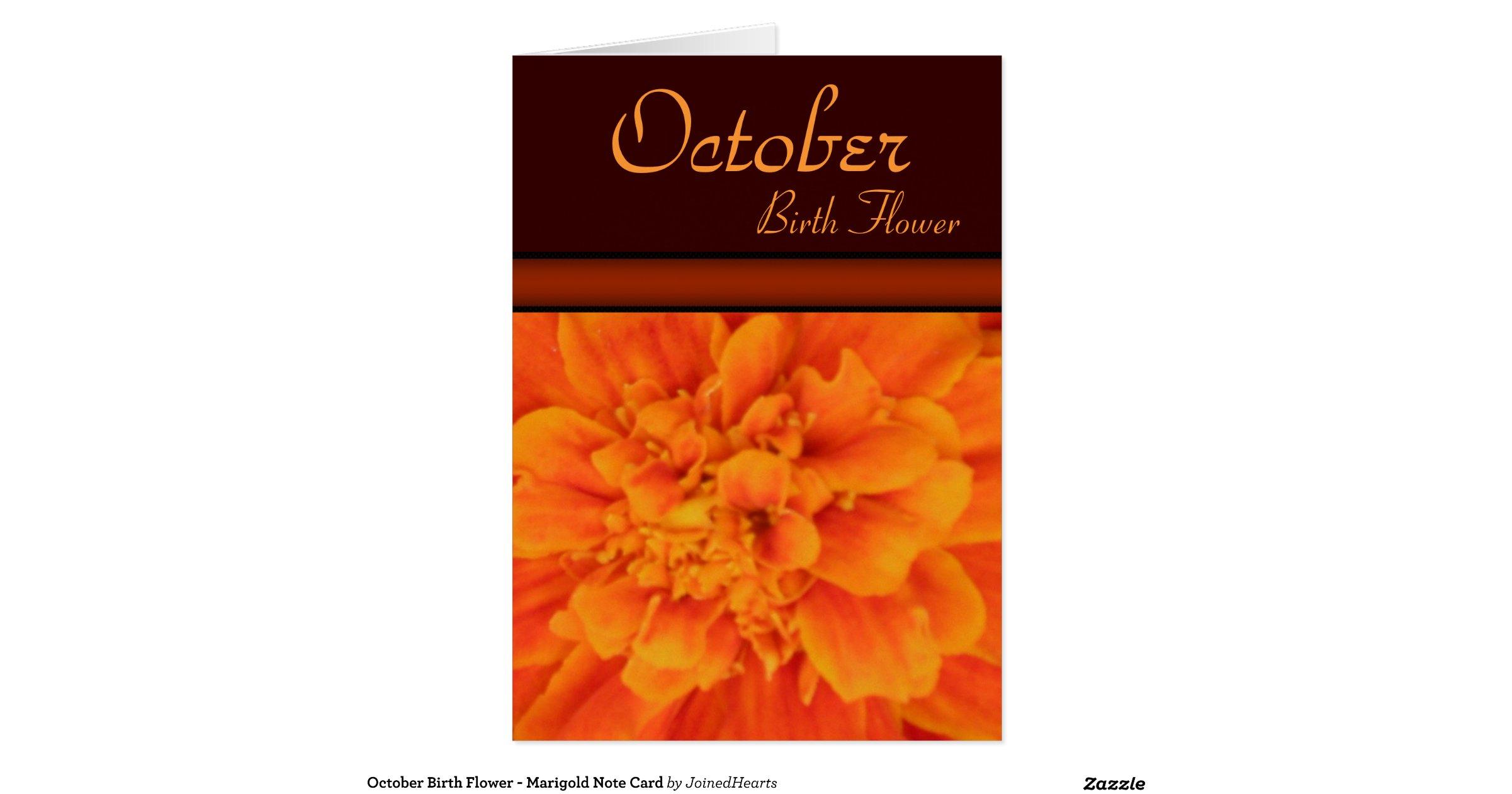 october birth flower marigold note card radb54d299b894a1197f6adedc4a3966e xvu