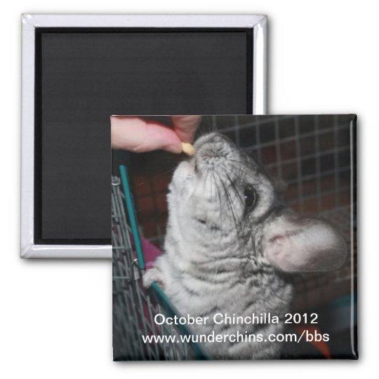 October chinchilla 2012 magnet