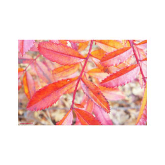 October Leaves on Canvas