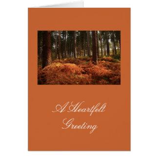 October Light Card