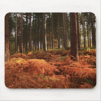 October Light Mouse Pad