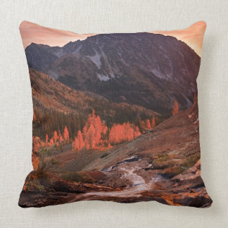 October Light on Headlight Basin Pillow