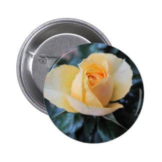 October Rose Pinback Button