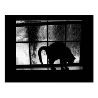 October Showers Cat Silhouette At Window 2 B&W Postcard