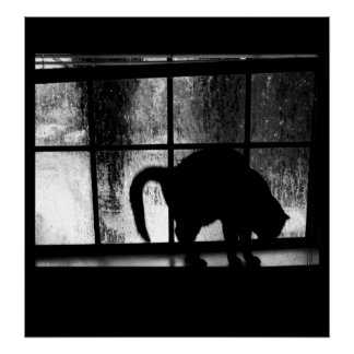 October Showers Cat Silhouette At Window 2 B&W Poster