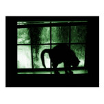 October Showers Cat Silhouette At Window 2 Green Postcards