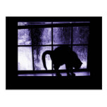 October Showers Cat Silhouette At Window 2 Indigo Post Card