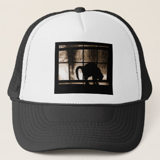 October Showers Cat Silhouette At Window 2 Orange Trucker Hat