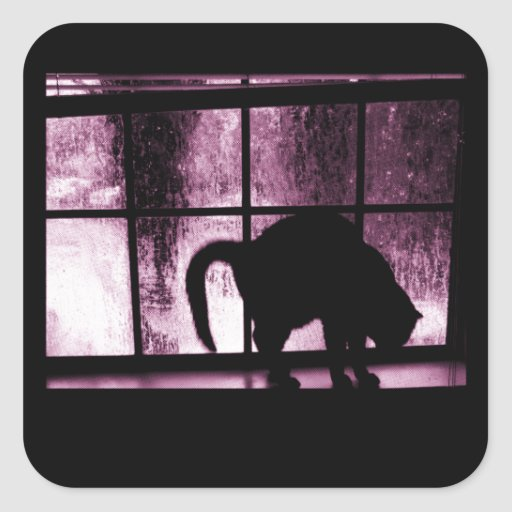 October Showers Cat Silhouette At Window 2 Pink Square Sticker