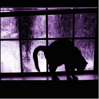 October Showers Cat Silhouette At Window 2 Purple Photo Sculpture Ornament