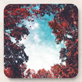 October Sky Coasters