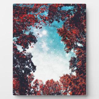 October Sky Plaques