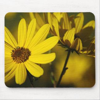 October Sunflower Mousepad
